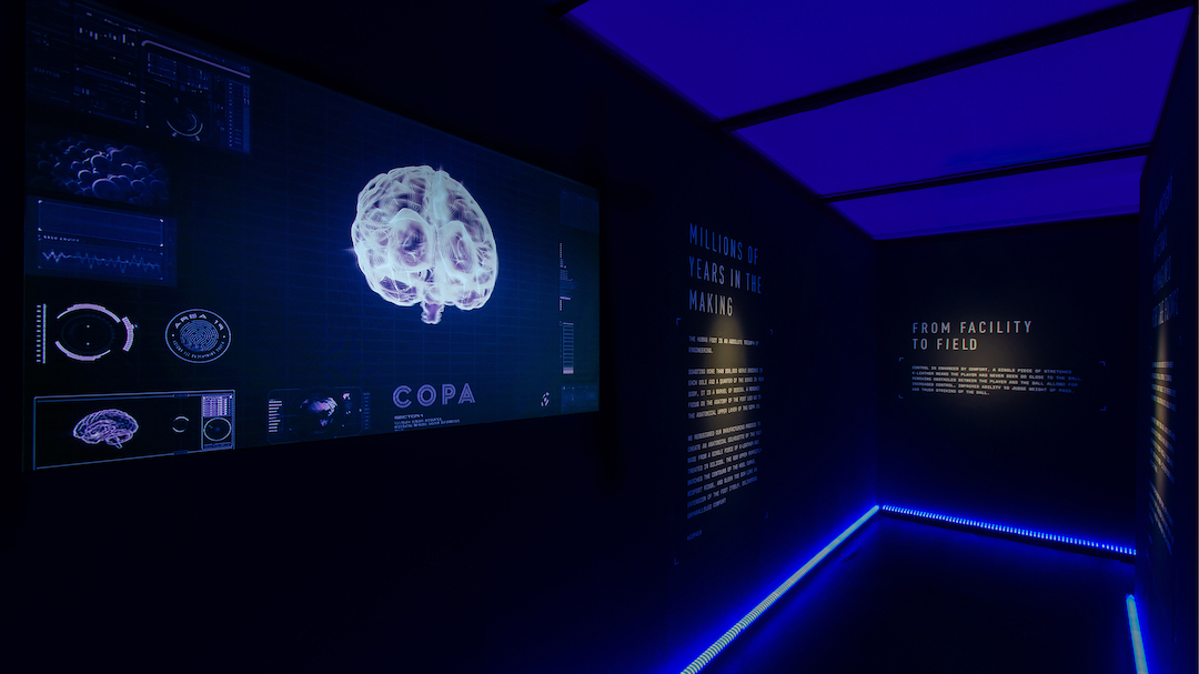 Copa_opt_Image 5